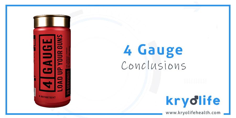4 Gauge review: conclusions