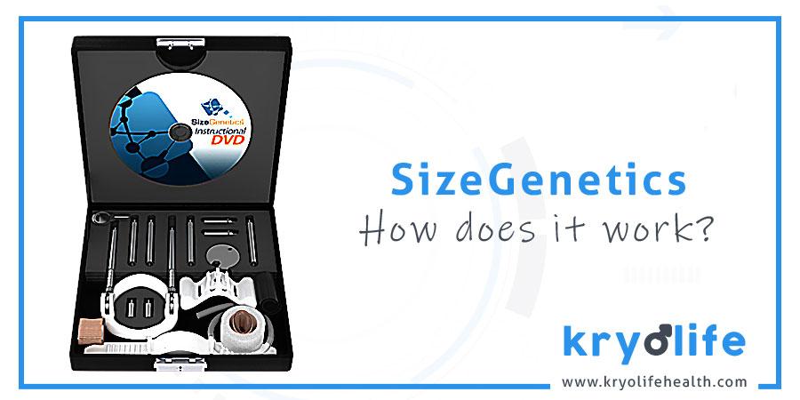 How does SizeGenetics work