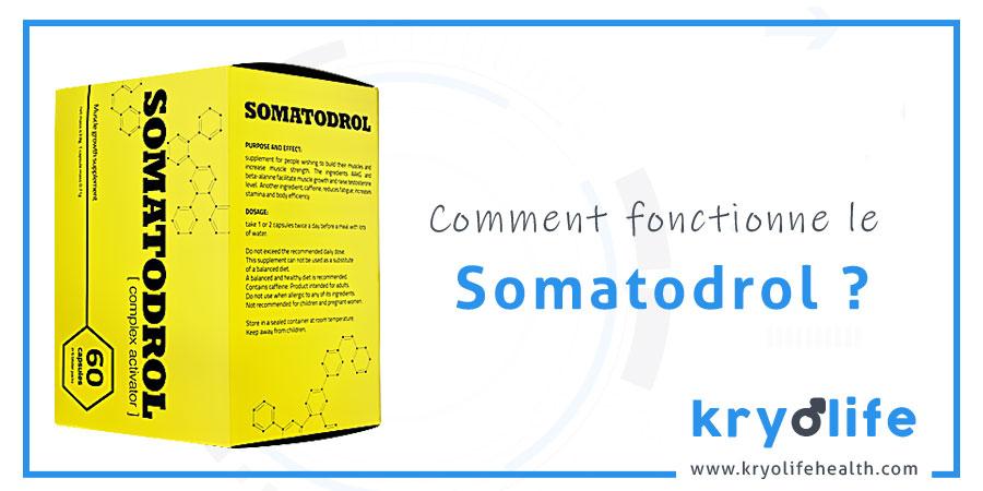 Comment fonctionne le Somatodrol