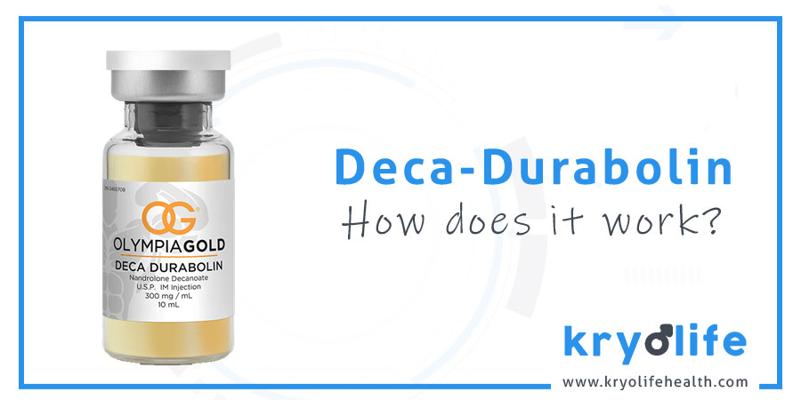Deca Durabolin Review 2019 | Is It Safe To Use?