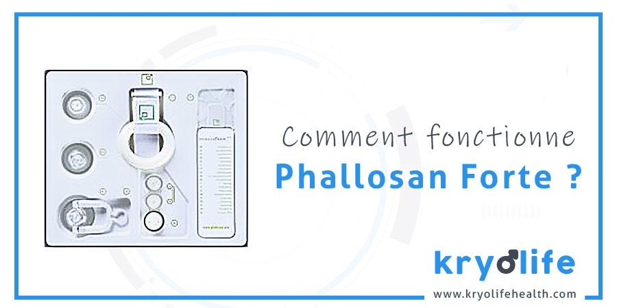 Comment fonctionne Phallosan Forte