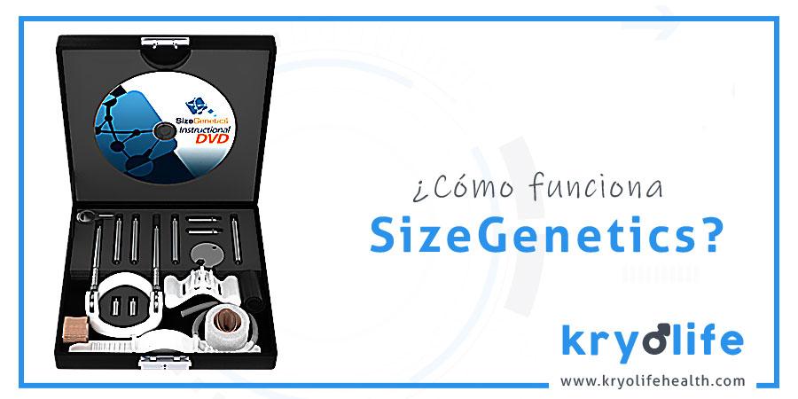 Cómo funciona SizeGenetics